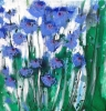 A PATCH OF CORNFLOWERS has been sold