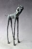 HORSE WHISPERER 2/12, Price: £1250.00, Medium: Bronze, Size: H 40cm W 22cm