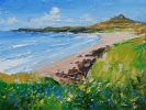 BLUEBELLS, ST DAVID'S has been sold