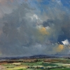 RAIN CLOUDS OVER BRIGHT FIELD has been sold