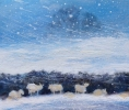 SHEEP SHELTERING IN BLIZZARD, PEMBROKESHIRE, Price: £380.00, Medium: Oil on panel, Size: 9 X 9 INS
