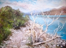 SKELETON TREE, TORRES DEL PAINE-PATAGONIA by PETER KETTLE FRSA RCA, Price: £2250.00, Medium: Mixed Media, Size: 60X80cm